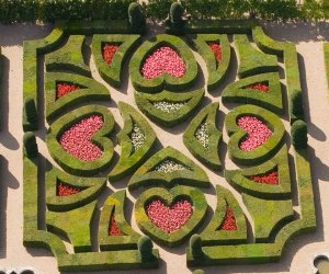 Villandry, le jardin d'ornement